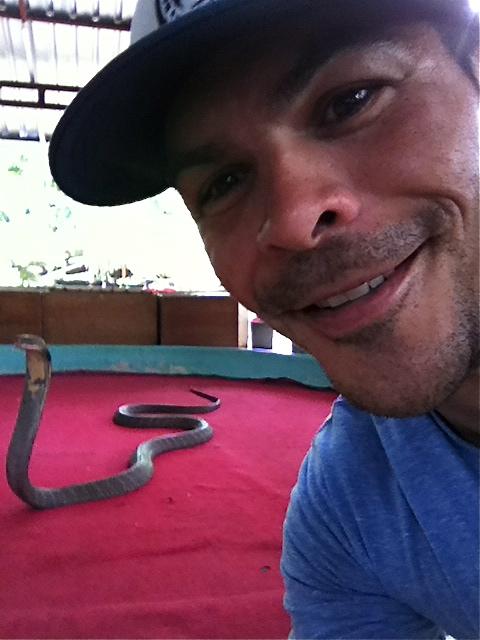 Cobra selfie